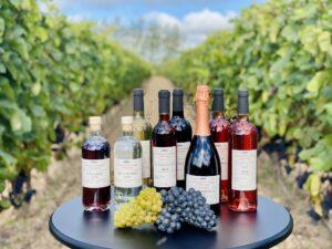 Flasker i vinmarken